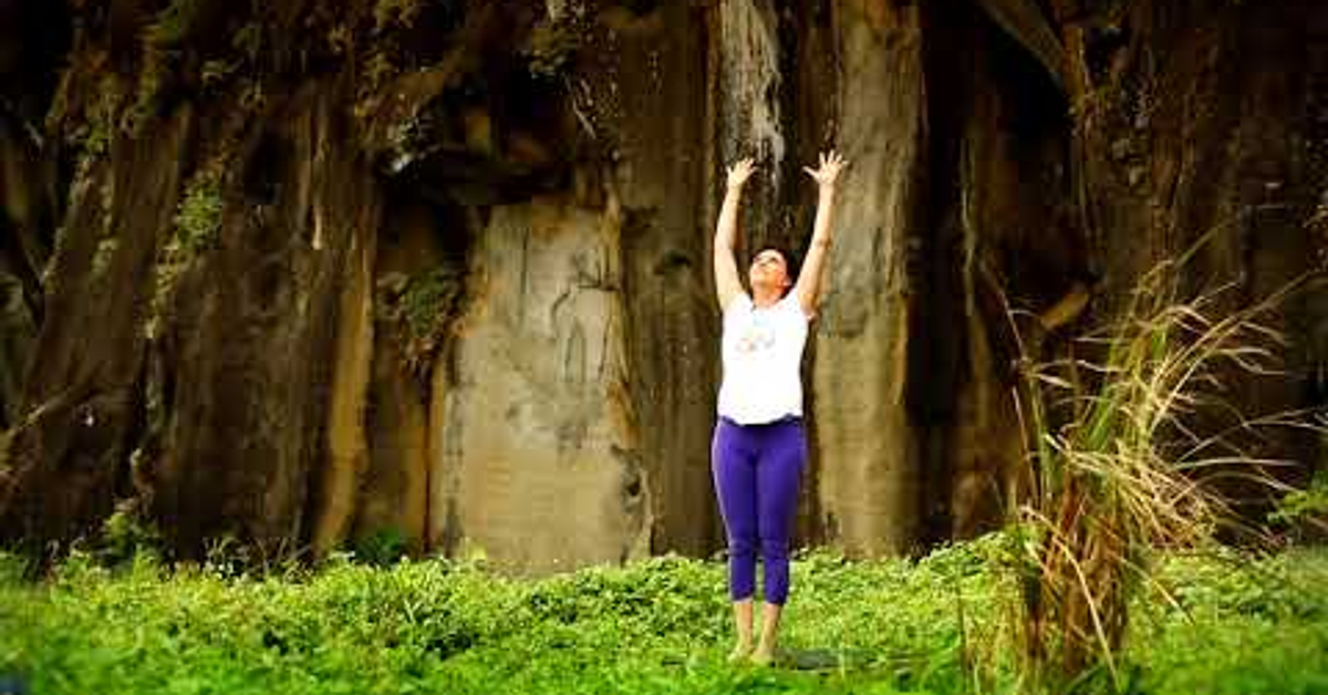 妮古瑪脈輪系列瑜珈 Niguma Hatha Yoga Chinese